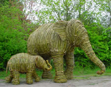Elephants made from willow