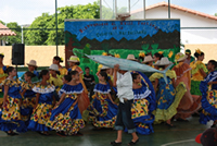 A performance at the Parrot Festival