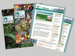 WLT Newsletters