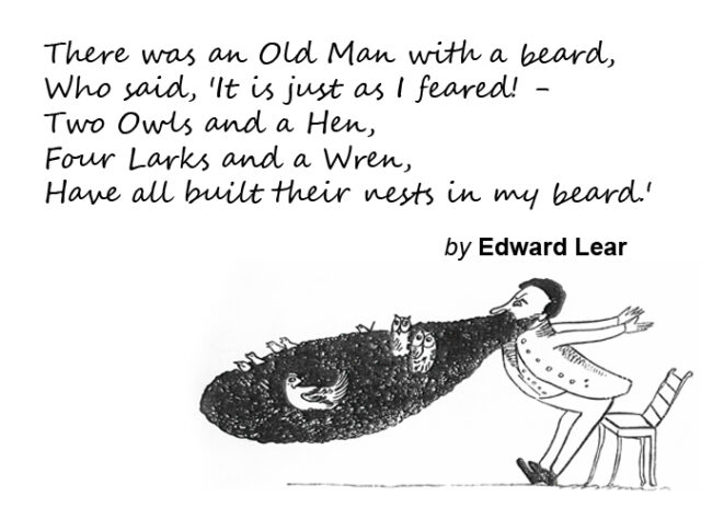 Edward Lear's illustration of his Old Man with a Beard limerick