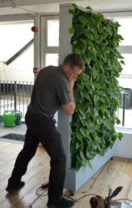 Photograph of Mitchell Dorman of Enterprise Plants moving the mobile green wall into position. © Christina Ballinger / WLT.