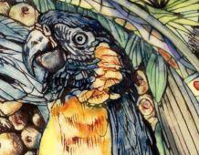 Detail of Blue-throated Macaw from a figural bowl by Maureen Minchin.