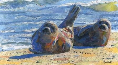 Harbour Seals on the beach
