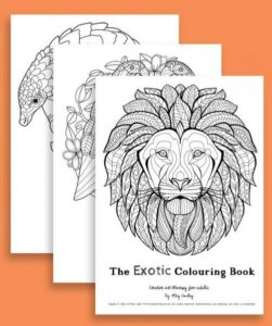 Exotic Colouring Book