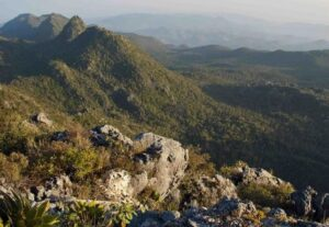 Sierra Gorda forests and mountains