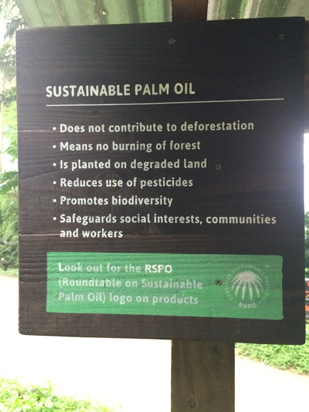 Palm Oil information
