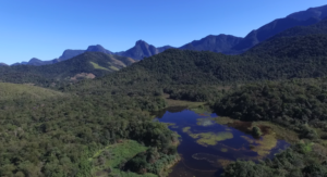 Restored and reforested area of REGUA. Credit: REGUA