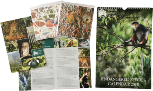 Cards, gift donation packs and calendar