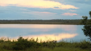 Early morning view over New River Lagoon, Hill Bank Field Station, RBCMA Credit Christina Ballinger