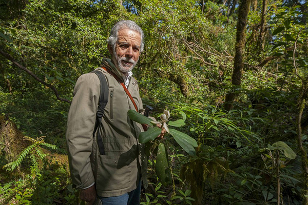 Roberto Pedraza Muñoz holding a magnolia species discovered in Sierra Gorda and named after his family, Magnolia pedrazae