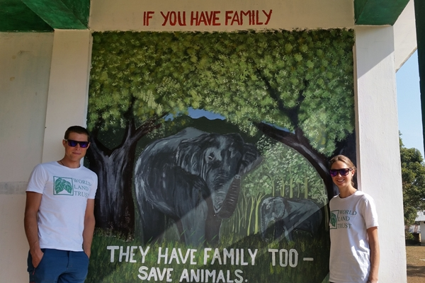 The local school is decorated with wildlife murals painted by schoolchildren.