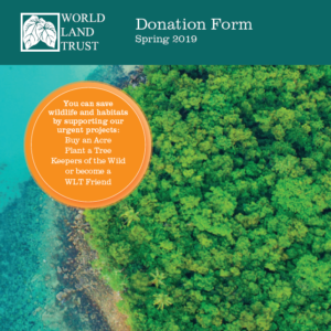 Download the donation form