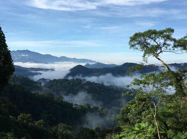 View over Khe Nuoc Trong ©Viet Nature/Pham Tuan Anh