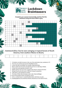 Brainteaser 5 – Click on the image to download the quiz.