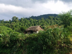 A traditional Van Kieu house on the outskirts of Khe Nuoc Trong, Carbon Balanced project in Vietnam. Credit: WLT/Natalie Singleton