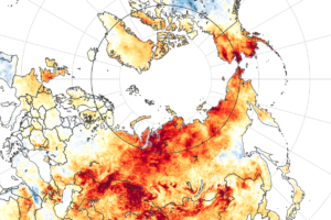 Map of land surface temperature anomalies from March 19 to June 20, 2020. Image credit: NASA.