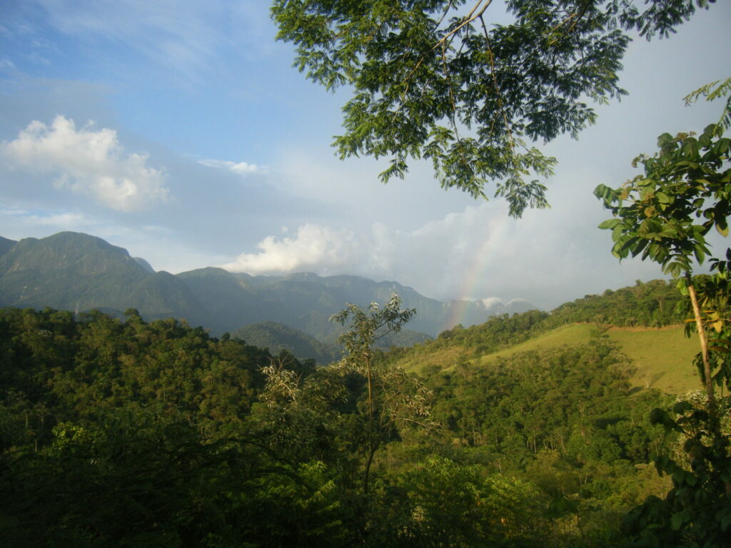 Mountains of REGUA