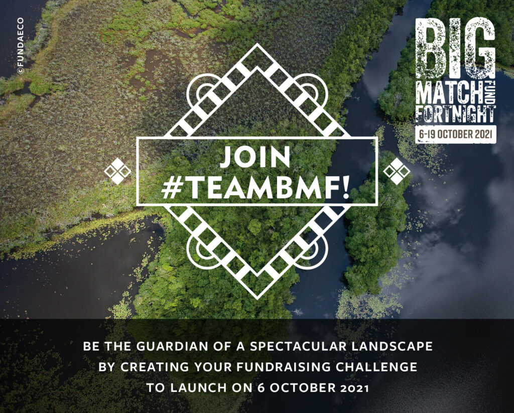 Join TEAMBMF